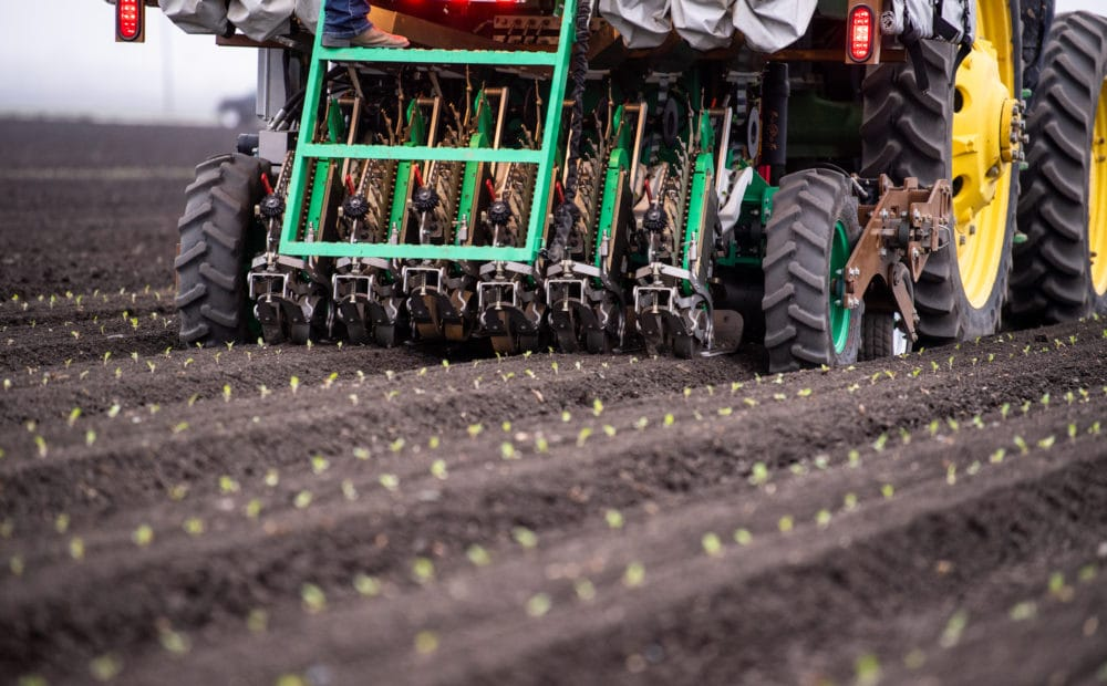 Precision agriculture technology – PlantTape automated transplanting system